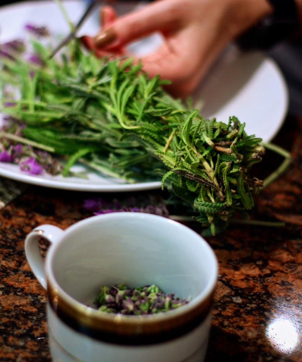 spiritedLA cocktail the covey lavender